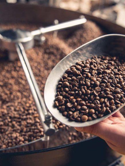 Máster en Elaboración de Productos de Café