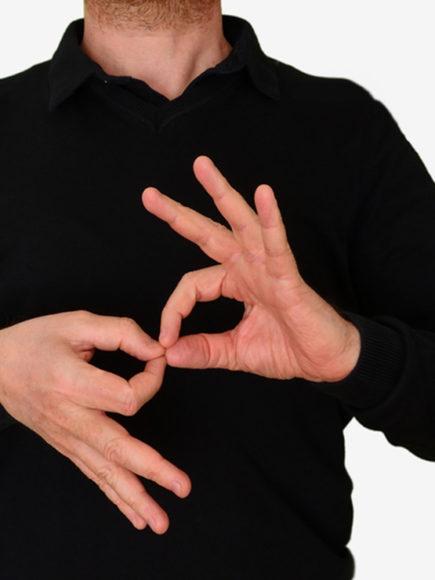 Máster en Lengua de Signos Española