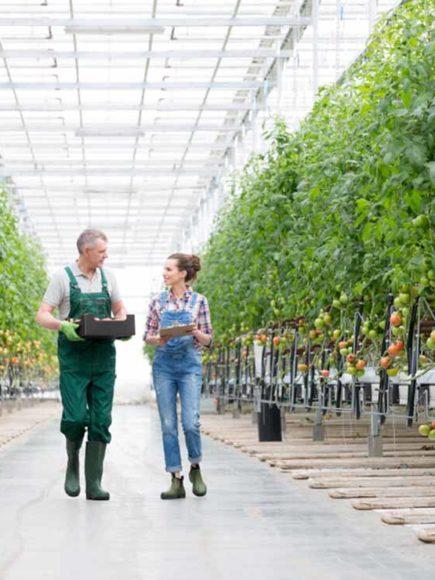 Máster en Horticultura y Floricultura