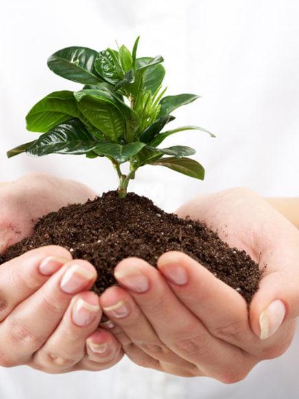 Máster en Control y Protección del Medio Natural