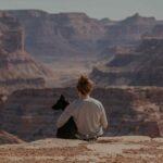 Pautas y consejos sobre educación canina